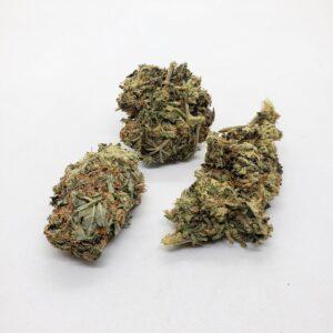 Blueberry Strain - Best Online Weed Store Hamilton Ontario
